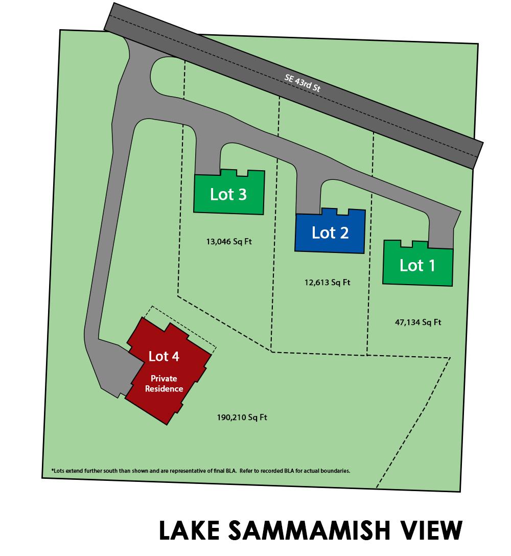 Lake Sammamish View