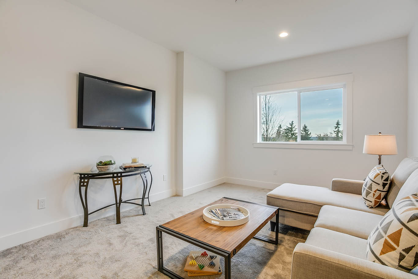 Bonus Room TV Area